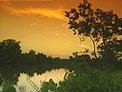 Cane River in Louisiana