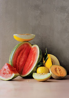 Get delicious melon recipes
